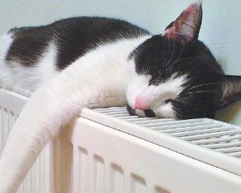 Отопление квартиры согласование